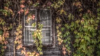 dreamy_glass_by_marlene_dietrich-d5i2nig